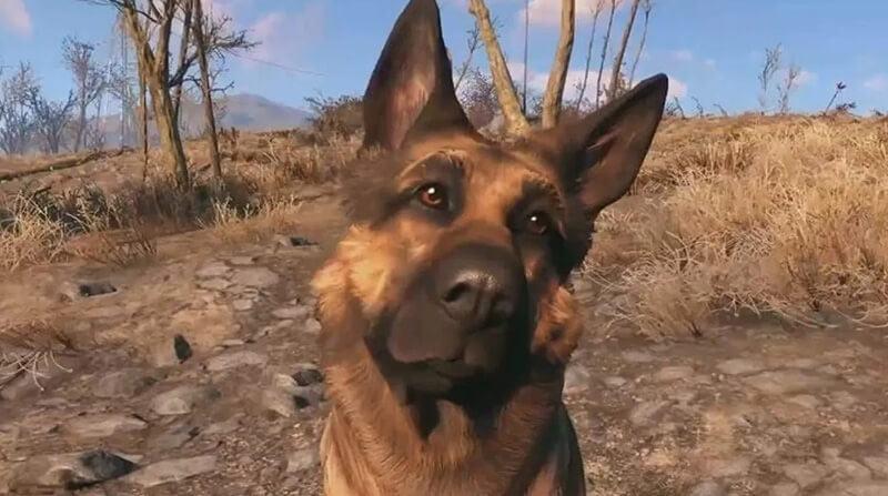 Dogmeat (Fallout 4)