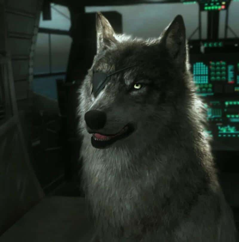 [2020 Updated] Top Best Video Game Dogs