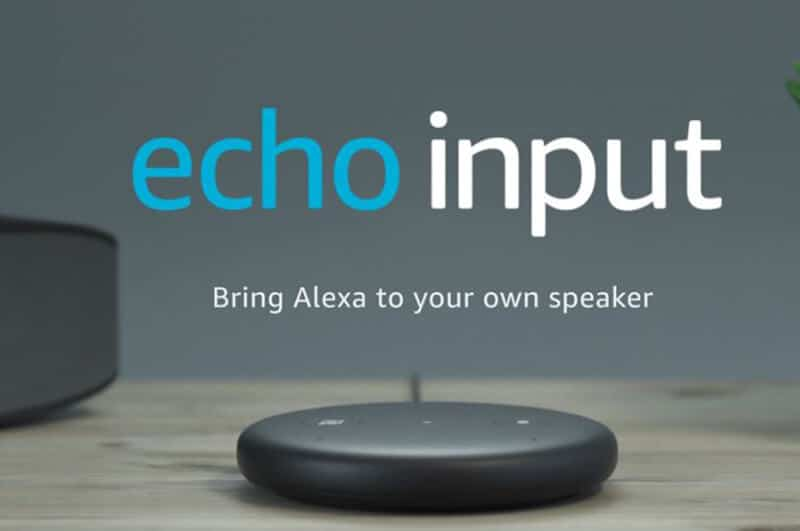 What's the Amazon Echo Input